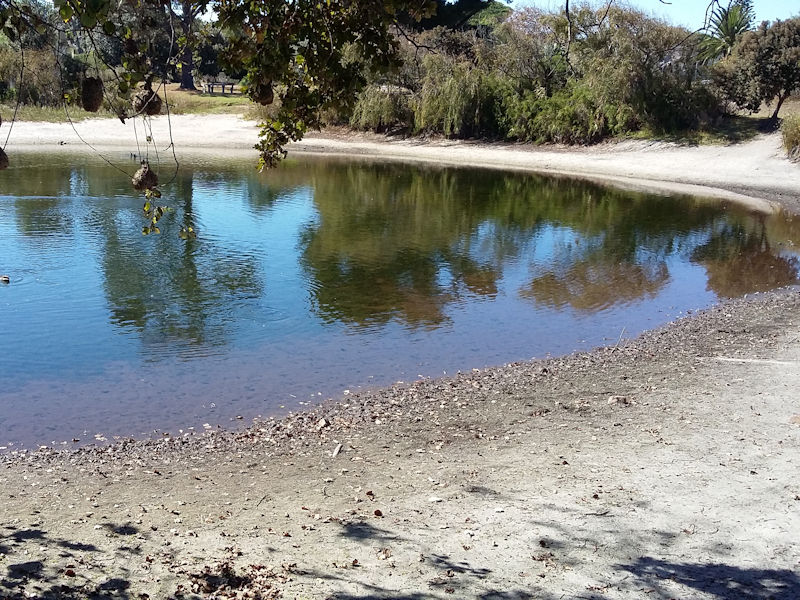 cape town conservation pond