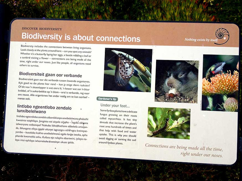 Biodiversity - & the protection of Fauna & Flora in Die Oog
