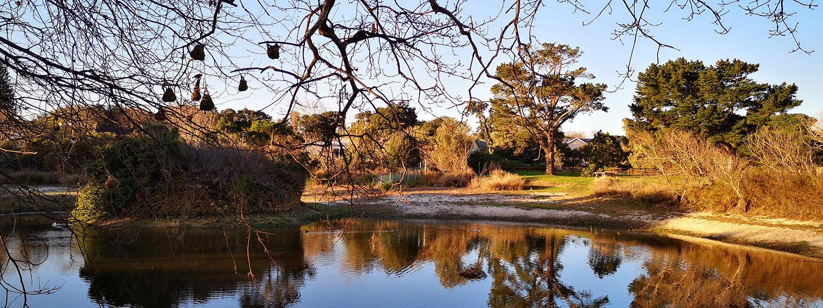 Sunset over Die Oog wetlands conservation area